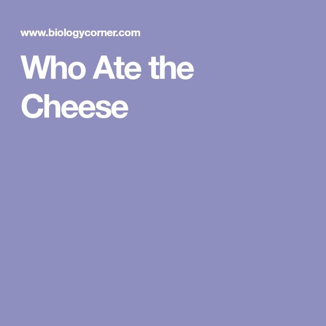 "Who Ate the Cheese: This is a ""puzzle Solver"" science experiment using DNA."