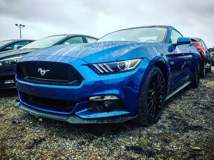 2017 Ford Mustang GT! Lightning blue with Performance Package! by JoshuaPrieto