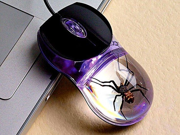 Spider Computer Mouse with Clear Background Best Offer. Best price Spider Computer Mouse with Clear Background. This wired Optical USB Computer Mouse has a REAL Spider in an unmistakable acrylic. Spider Computer Mouse with Clear Background #Spider #Computer #Mouse #Clear #Background