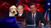 Steve King's Dogfighting Defense | The Colbert Report | Video Clip (4:21) | Comedy Central | I detest this POS King and can't imagine what type of human being it takes to vote for an individual as mentally distrubed as this and want them in DC as their representative. No wonder this country is in so much trouble. The second video (1:34) is: Rep. Steve King (R-IA) Clarifies Statements On Dog Fighting | https://youtu.be/GKJ7oVy20eo | Please watch and share both.