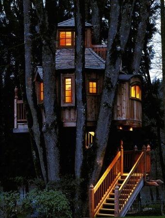 Tree House Masters Animal planet