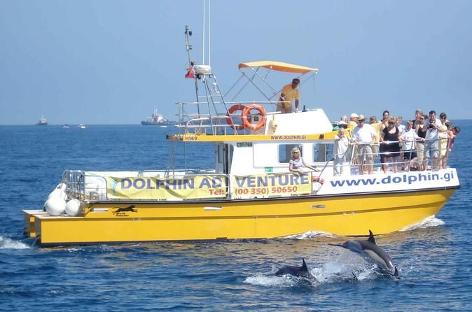 Dolphin Watching Excursion in Gibraltar See Gibraltar's dolphins wild and free! Sail The Bay of Gibraltar with Dolphin Adventure for a wild dolphin safari. The crew and captain will guide you on a responsible dolphin watching tour with on-board marine biologist. A must add to your list of things to do on holiday in Gibraltar or the Costa del Sol.  This is simply the best way to see Gibraltar's dolphins, wild and free. Join our experienced, professional, qualifi...