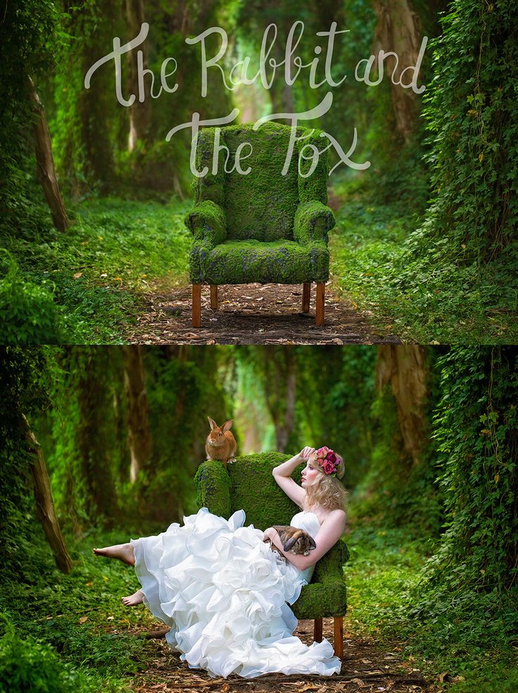 Mossy chair forest ivy vine garden background backdrop digital moss nature fairy fantasy whimsical photography newborn composite stock by RabbitAndTheFoxProps on Etsy https://www.etsy.com/listing/387255106/mossy-chair-forest-ivy-vine-garden