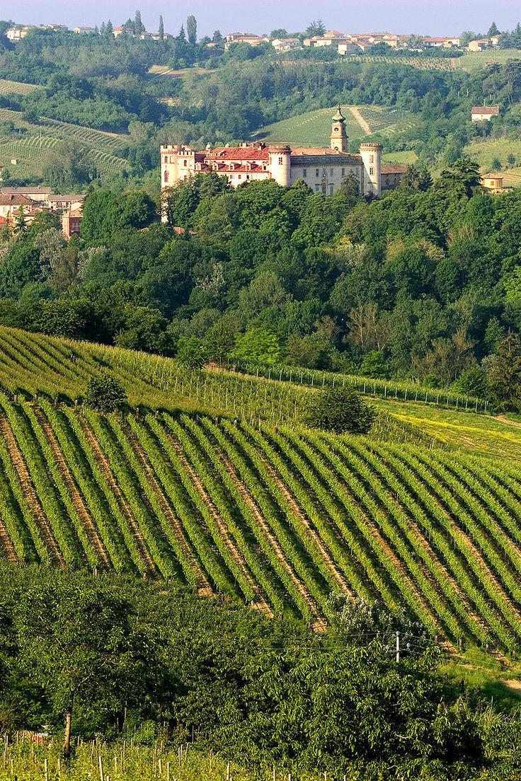 Colline del Monferrato - Costigliole d'Asti.