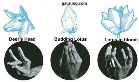 Hasta Mudras (Hand Gestures) in Indian Classical Dance