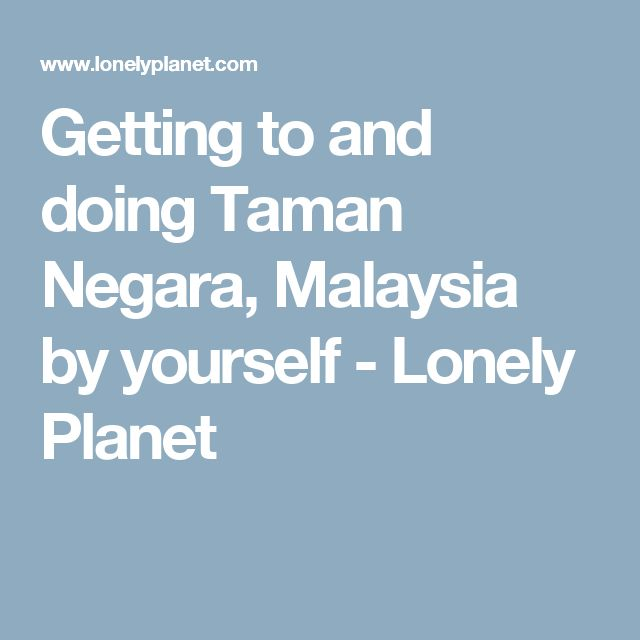 Getting to and doing Taman Negara, Malaysia by yourself - Lonely Planet