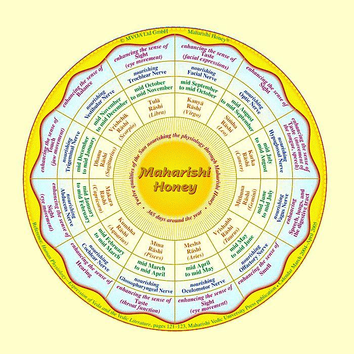 maharishi honey. What is this?  Well, a honey even better than manuka honey! no way.... :)  read more here: http://healthywithhoney.com/maharishi-honey-seems-to-be-better-than-manuka-honey-and-is-not-the-only-one/