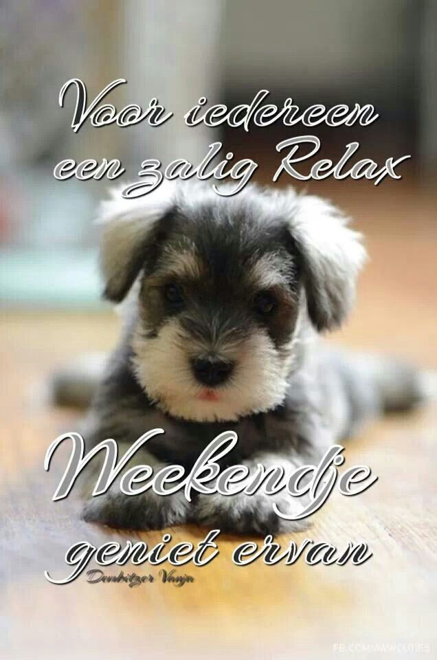 Fijn weekend x