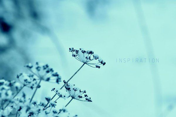 Spirit Winter by ElenaCute.deviantart.com on @deviantART