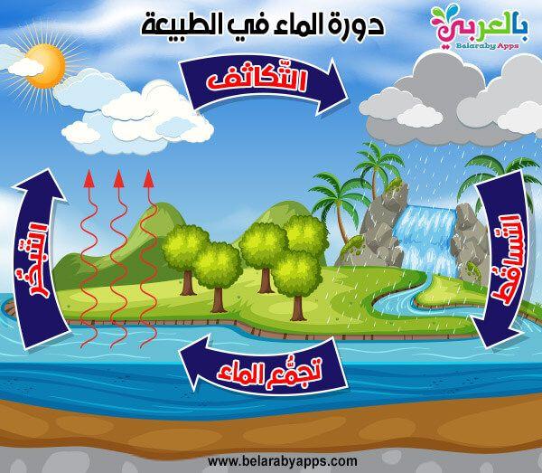 بحث عن دورة الماء في الطبيعة بحث عن الماء سر الحياة بالعربي نتعلم Grinch App