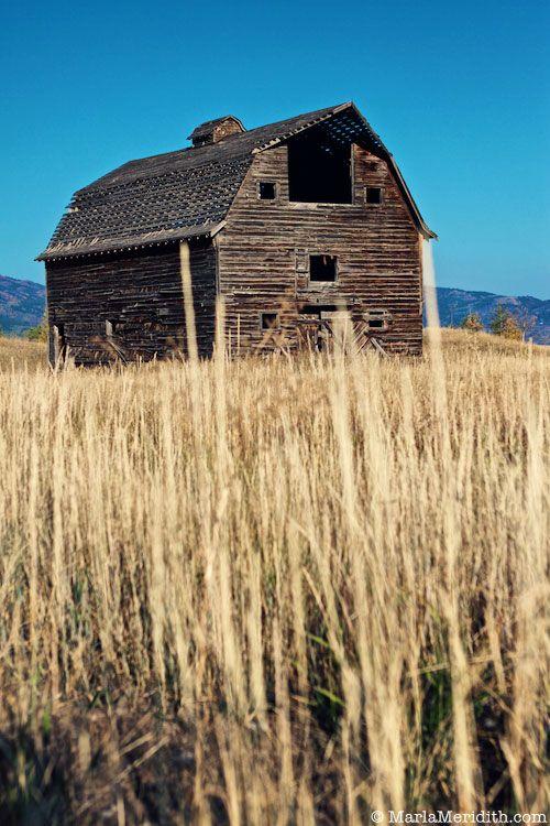 Old Barn in Victor, Idaho on FamilyFreshCooking.com © MarlaMeridith.com