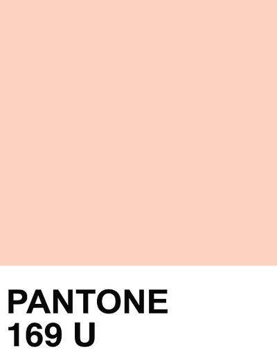 """I think this is what the bridal industry thinks """"peach"""" is because this is what all their """"peach"""" stuff looks like to me...pink...it's pretty-ish too. Pantone 169 U"""