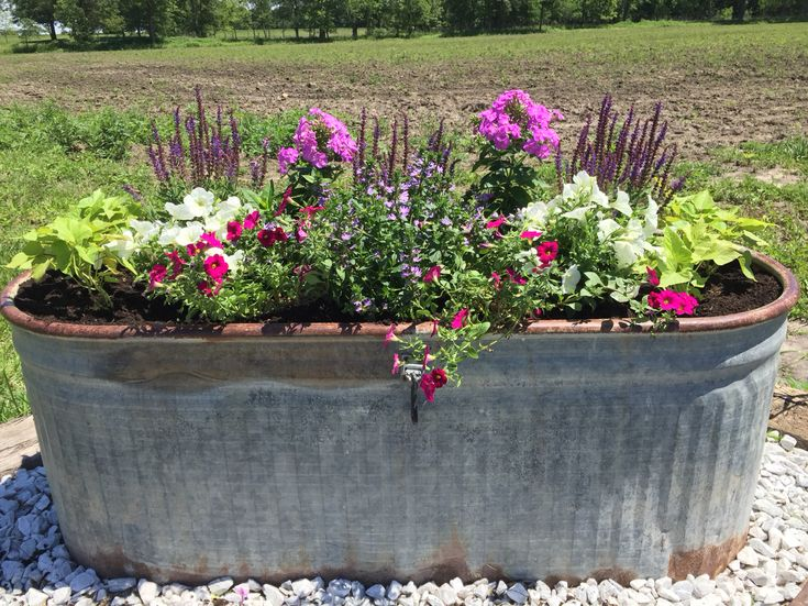 25 best trough planters ideas on pinterest plant troughs garden privacy and bamboo privacy fence