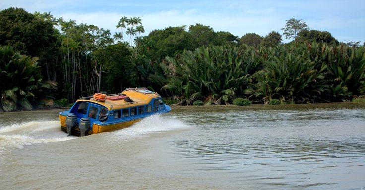 Per Boot durch den Dungel Bruneis