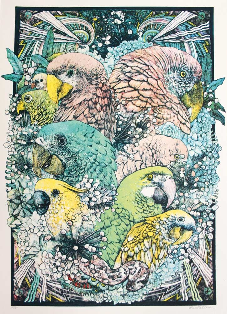 'Jungle Book - Parrots Colour Edition' - Lucille Clerc