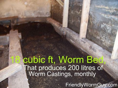 how to start a worm farm for fishing