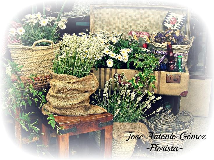 Una maleta llena... de flores!!