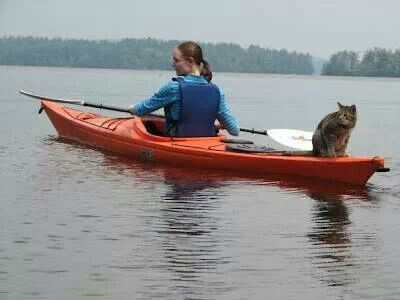 Already picturing Chester as my kayak buddy. I now know my goal in life.
