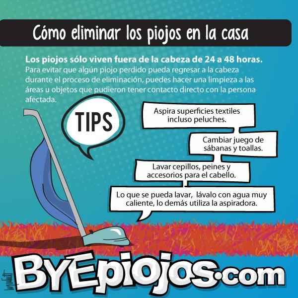 Tips y recomendaciones para deshacerte de los piojos - Como limpiar una casa rapido ...