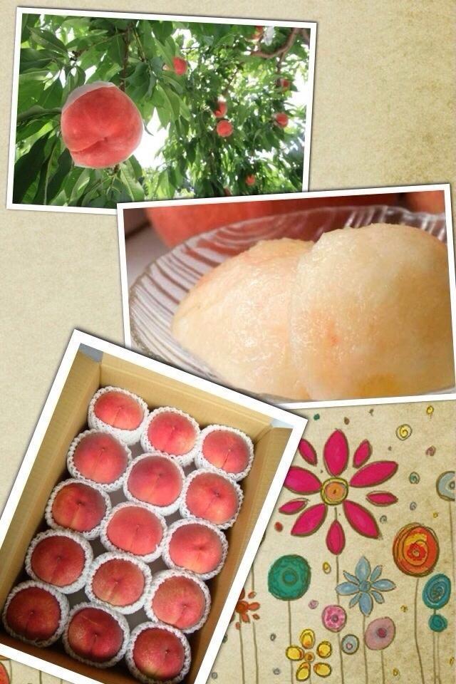 [日本水蜜桃] 想吃甜甜蜜蜜又多汁的日本水蜜桃,不一定要到日本才可買到喔!一通電話台灣直接訂購,送貨到家吔! 連繫電話:+818042219295 負責人:袁依玲