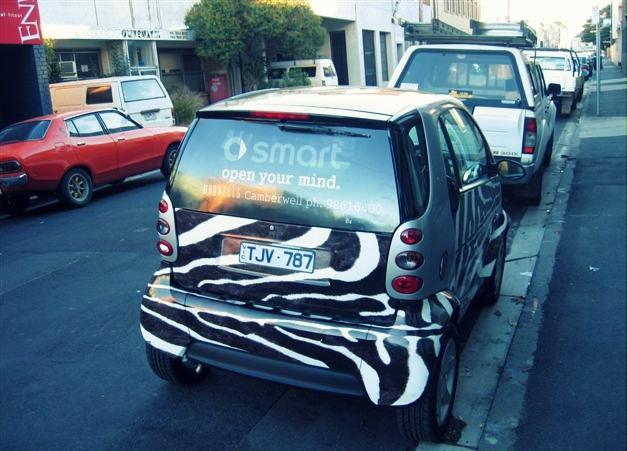 zebra, vehicle wrap, smart car, www.autoskin.com.au