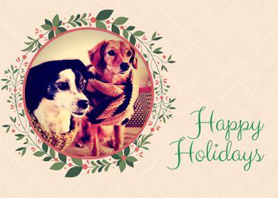Holiday christmas dogs