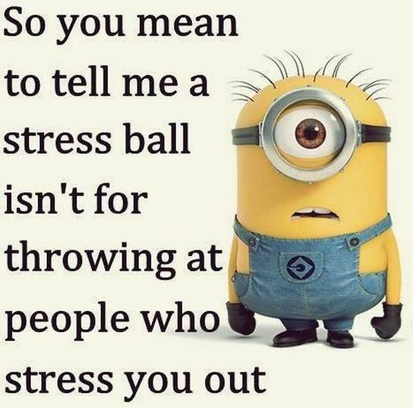 Social Work Quotes Funny Daily Inspiration Quotes