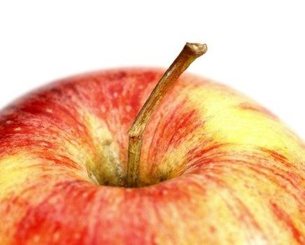 Starter: apple
