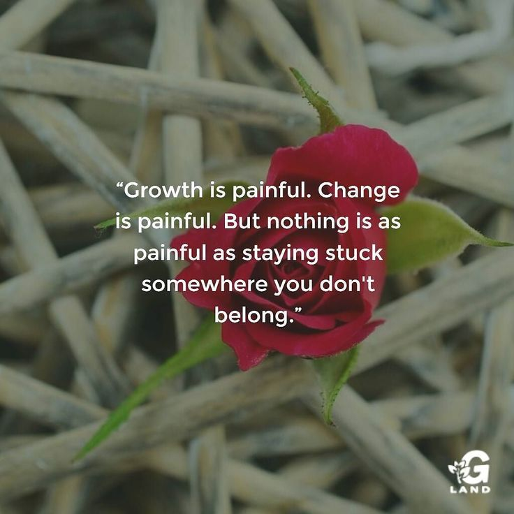 Growth is painful. Change is painful. But nothing is as painful as staying stuck somewhere you don't belong. #quote #quotes