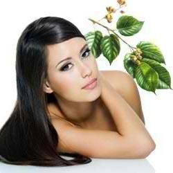 Hair loss Treatment: Rejuvenates Your Hairs Naturally