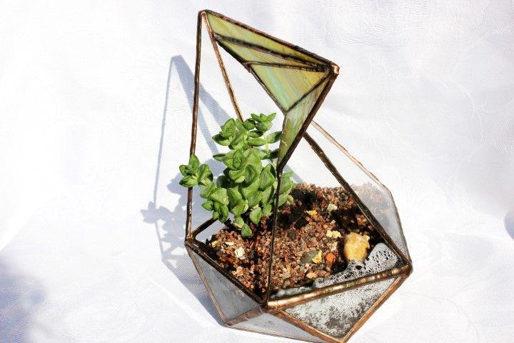 Florárium beültetve kis növénykékkel.