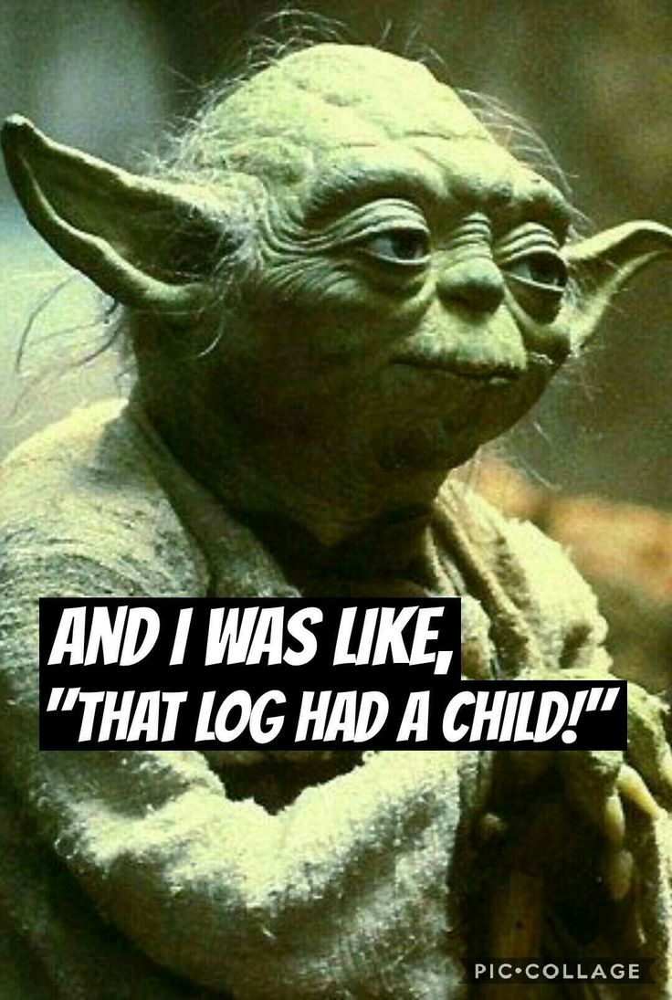 Yoda, Bad Lip Reading. Seagulls (Stop it Now!)