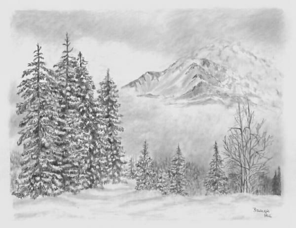 44 best images about pen pencil on pinterest mountain for What is landscape drawing