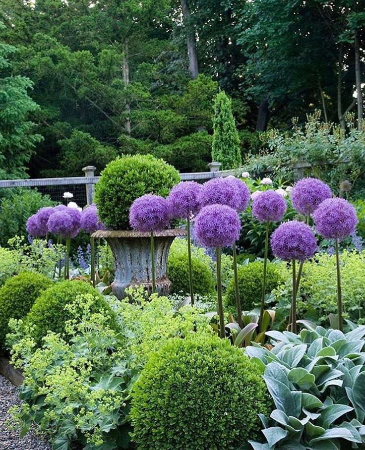 "TOWN&COUNTRY: ""Purple and green are the ideal color combo : gardens at first sight..."""