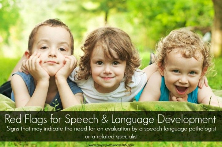 Red Flags for Speech & Language Development (6 months and up)