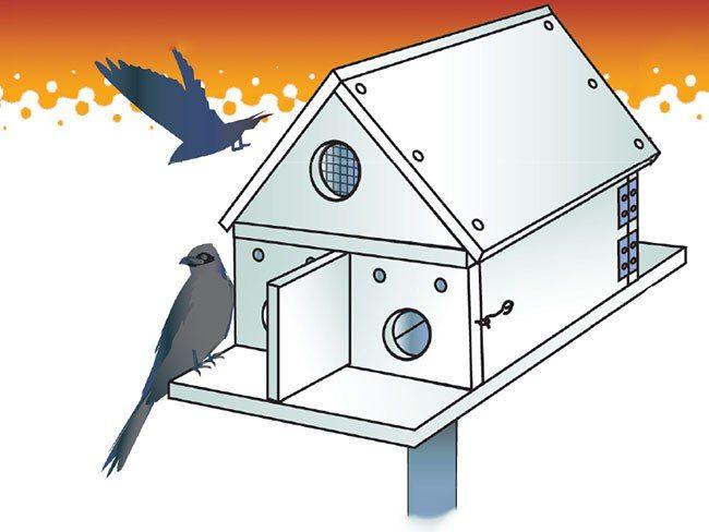 best free martin house plans ideas - 3d house designs - veerle