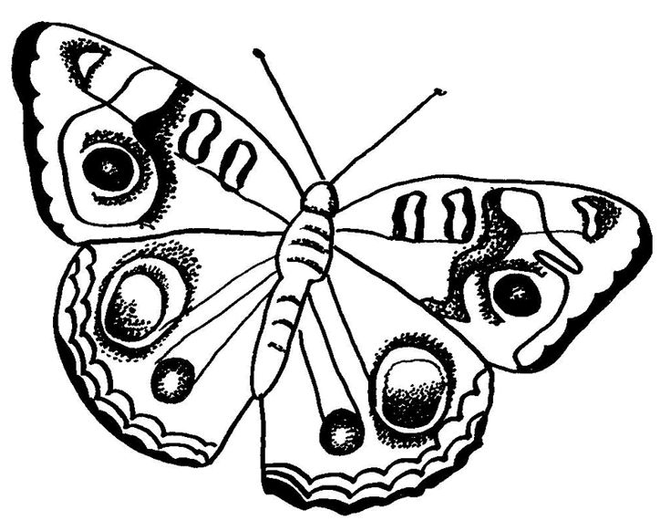 Ideal Butterfly Coloring Page 66 FREE Butterfly Coloring Pages