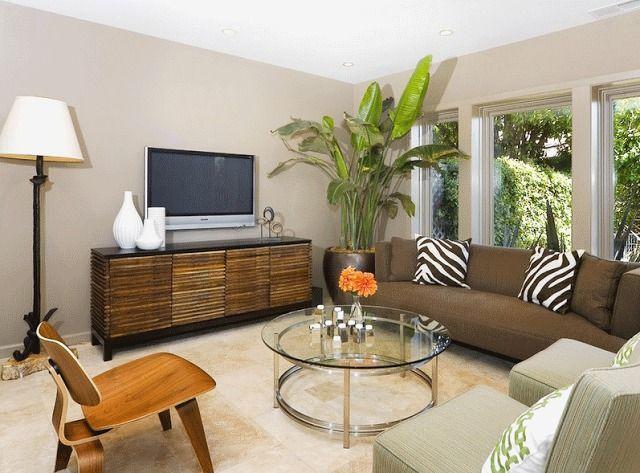 Гостиная в тропическом стиле   #гостиная #зебра #тропическийстиль