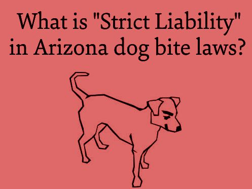 """Arizona Dog Bite Laws impose """"strict liability"""", what does that mean? - http://www.zacharlawblog.com/2013/10/arizona-dog-bite-laws-impose-strict-liability-what-does-that-mean-.html"""