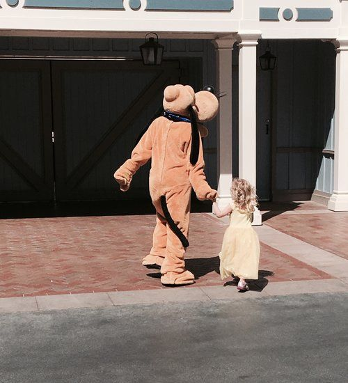 Tips For Meeting Charcters At Disneyland