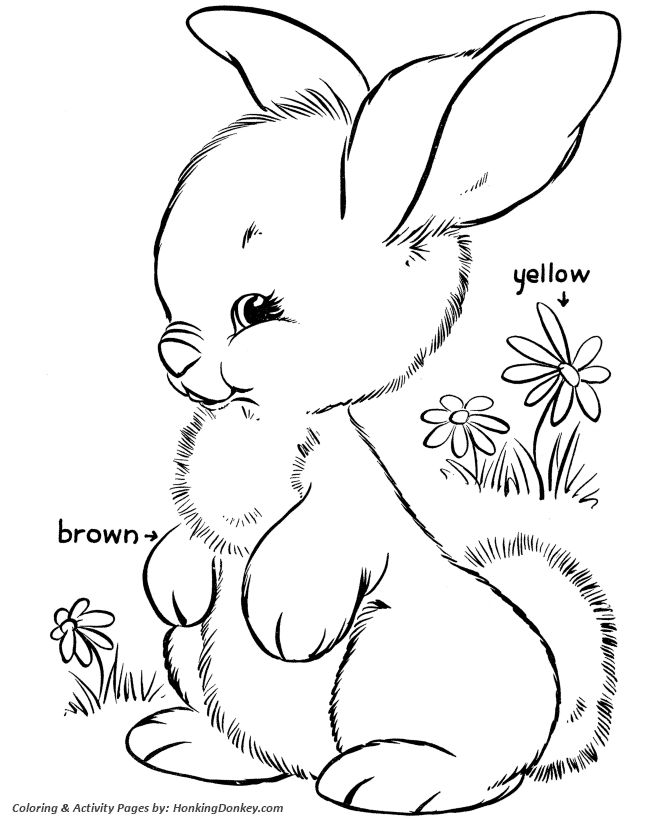 easter bunny coloring pages fluffy easter bunny