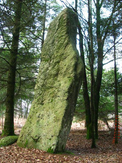 Brittany, France, Menhir coleho colpo plaudren