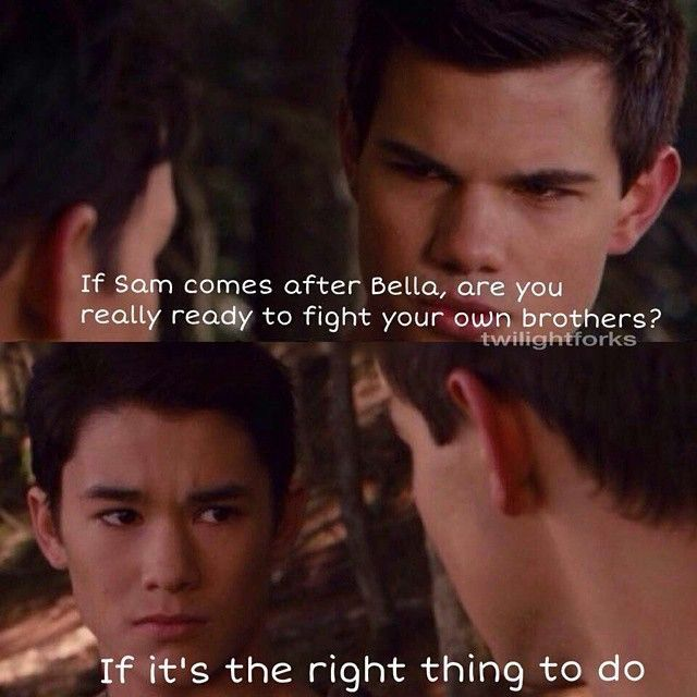 breaking dawn pt1 seth and jacob uley wolves pinterest