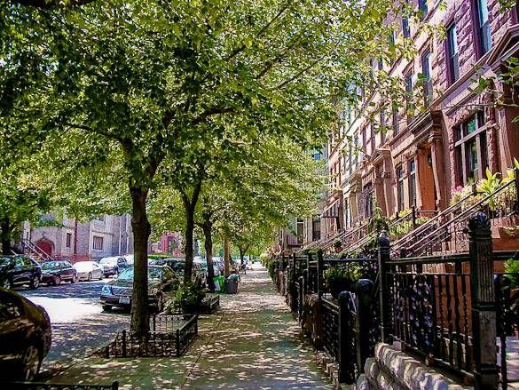 Image of brownstone houses in Bedford-Stuyvesant, Brooklyn