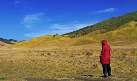Andry Permadi Widjaja: I saw this beautiful place during my third visit to mount Bromo. My daughter was enjoying and admiring this beautiful savanah when I capture this image.