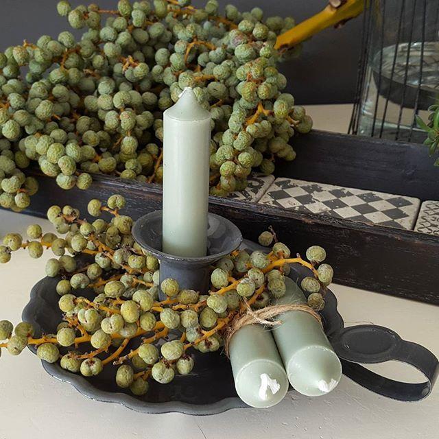 Zo sfeervol blakertje met dadels.  #blakertje #kaarsjes #kandelaar #dustygreen #groen #iblaursen #dadeltak #dadels #puurenmooiwonen