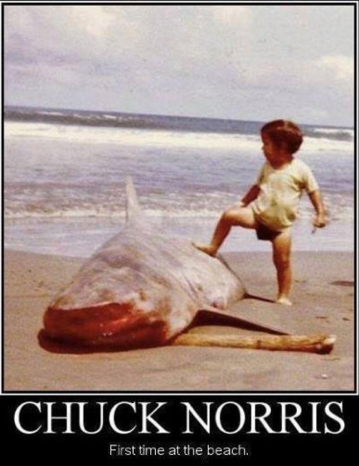 Chuck norris meme - http://www.jokideo.com/