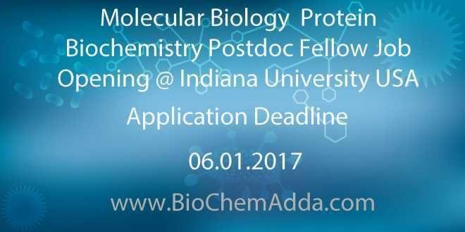 Molecular Biology  Protein Biochemistry Postdoc Fellow Job Opening @ Indiana University USA