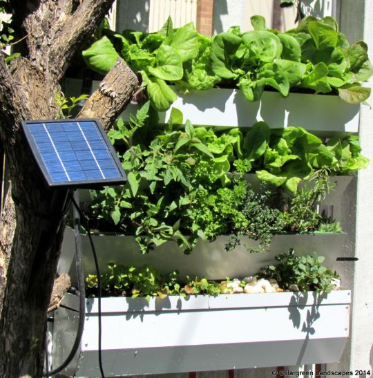 Our Product of the Week is a great invention that water plants on its own. A little sunshine and the solar panel activates the pump and the water climbs from the bottom tray to the top. All we have to do is top up the bottom tray with water, once in a while.