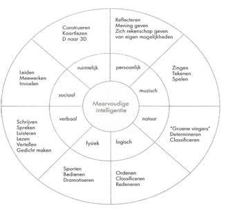 Meervoudige intelligentie in een cirkel